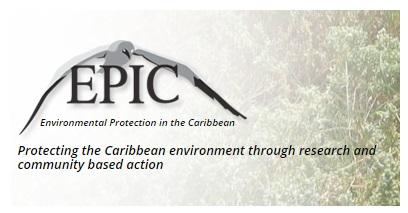 New Eco-Label Coordinator Invites Award Applicants